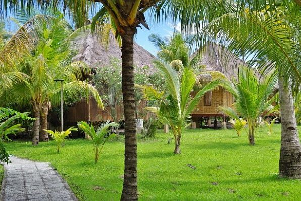 Indonesië - Flores - Maumere - Sea World Resort - bungalow en tuin - foto: Sea World resort