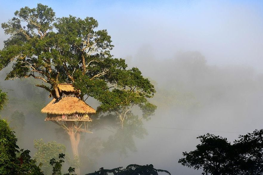 Laos - Bokeo National Park - Gibbon Experience - bungalow - foto: Gibbon Experience