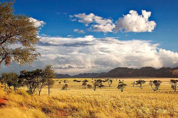 Vroegboekkorting 2020 - Namibië & Botswana