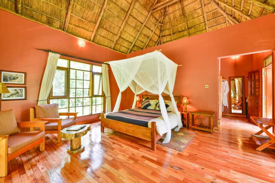 Primate Lodge - Kibale - luxury double - Oeganda - foto: Primate Lodge