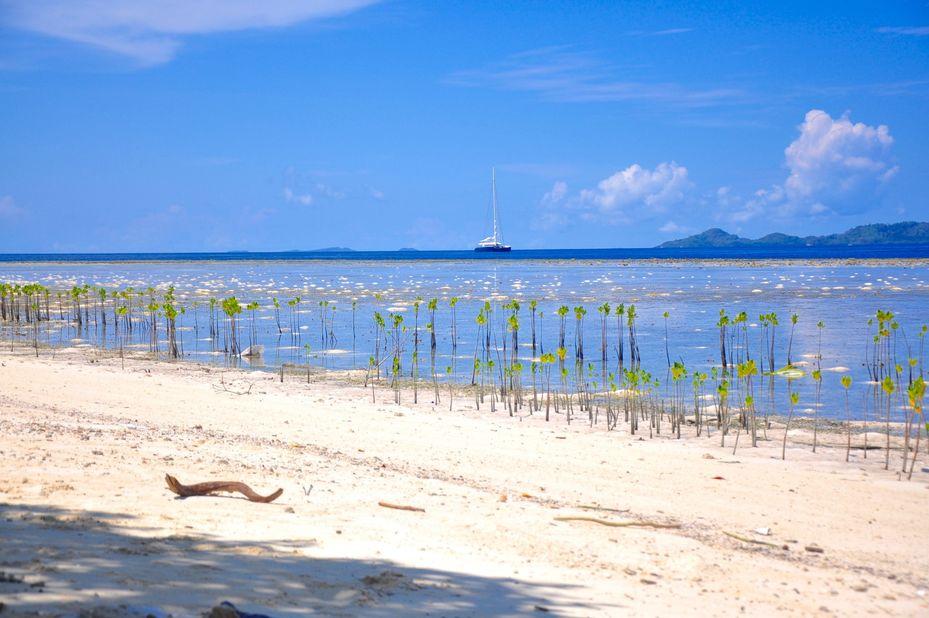 Raja Ampat Dive Resort - strand -Papua - Indonesie - foto: Raja Ampat Dive Resort