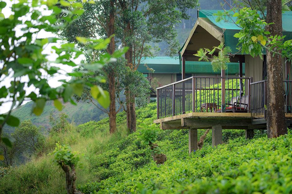 - foto: madulkelle tea & eco lodge
