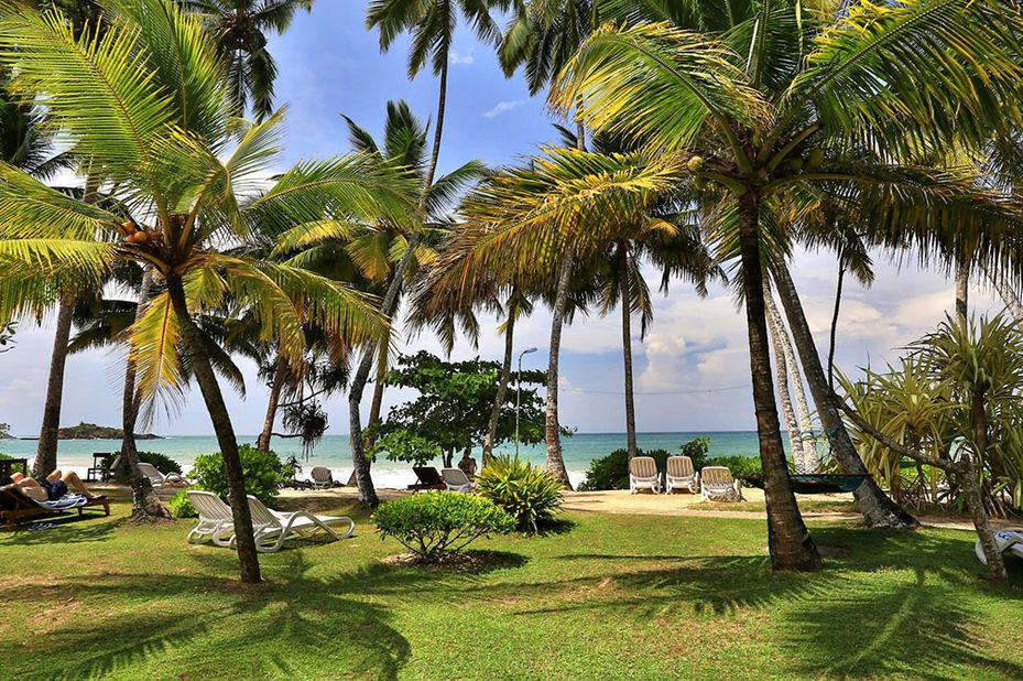 - foto: Paradise Beach Club Mirissa