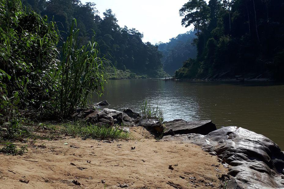 Taman Negara in Maleisië (klantfoto)