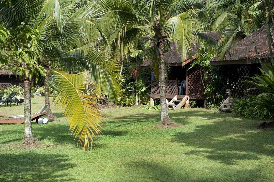 Tanjung Inn - tuin - Cherating - Maleisie - foto: Tanjung Inn