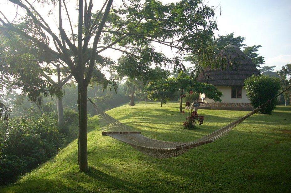 The Haven - banda - tuin - Jinja - Oeganda - foto: The Haven
