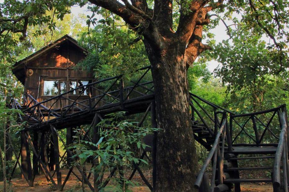 Tree House Hideaway Bandhavgarh - boomhut buitenkant - Bandhavgarh - India - foto: Tree House Hideaway Bandhavgarh