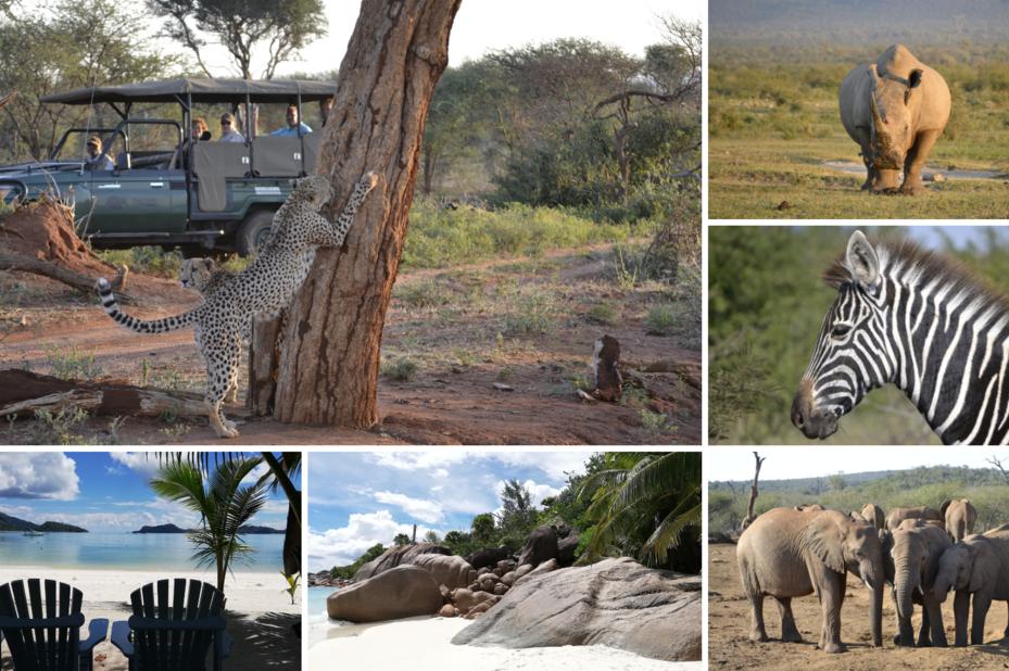 Huwelijksreis Zuid-Afrika & de Seychellen - klantfoto - foto: klantreactie