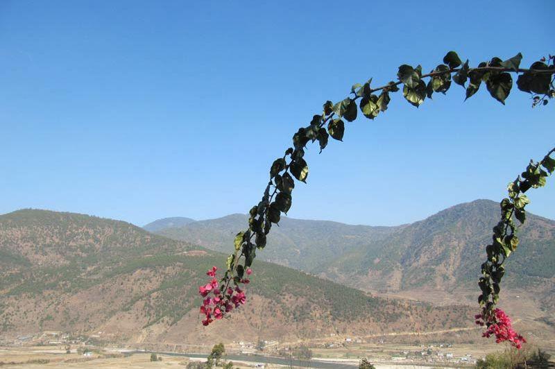 uitzicht met bloem Hotel Vara - Hotel Vara - Bhutan