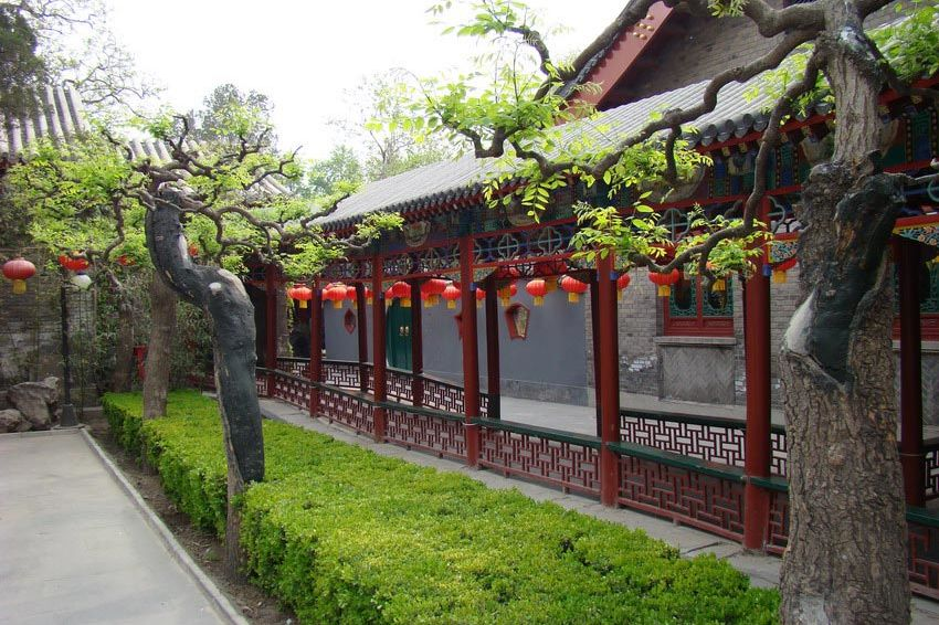 gang met lampionnen Bamboo garden - Bamboo garden - China