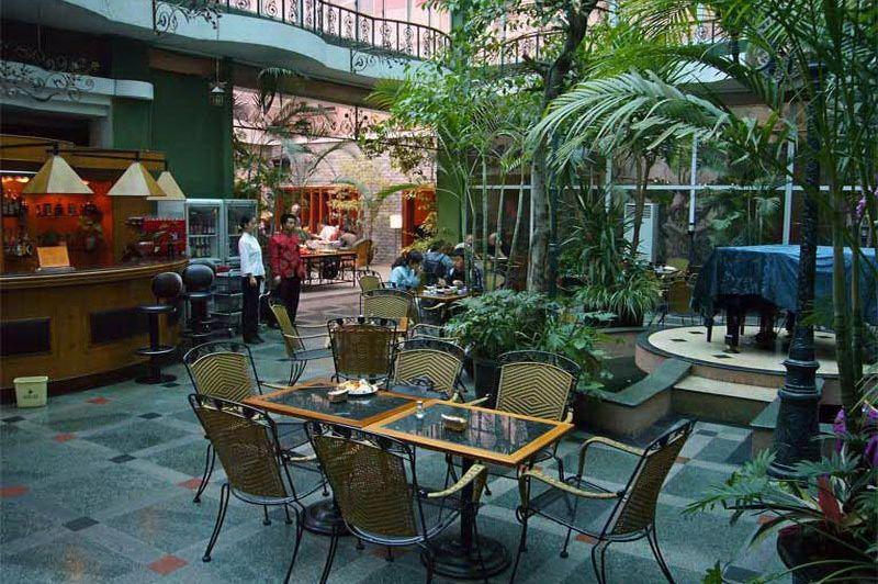 restaurant Camellia Hotel - Camellia Hotel - China