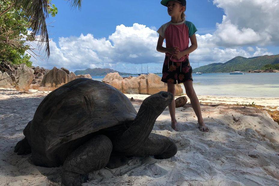 dochter van familie Visser bij een schildpad op de Seychellen