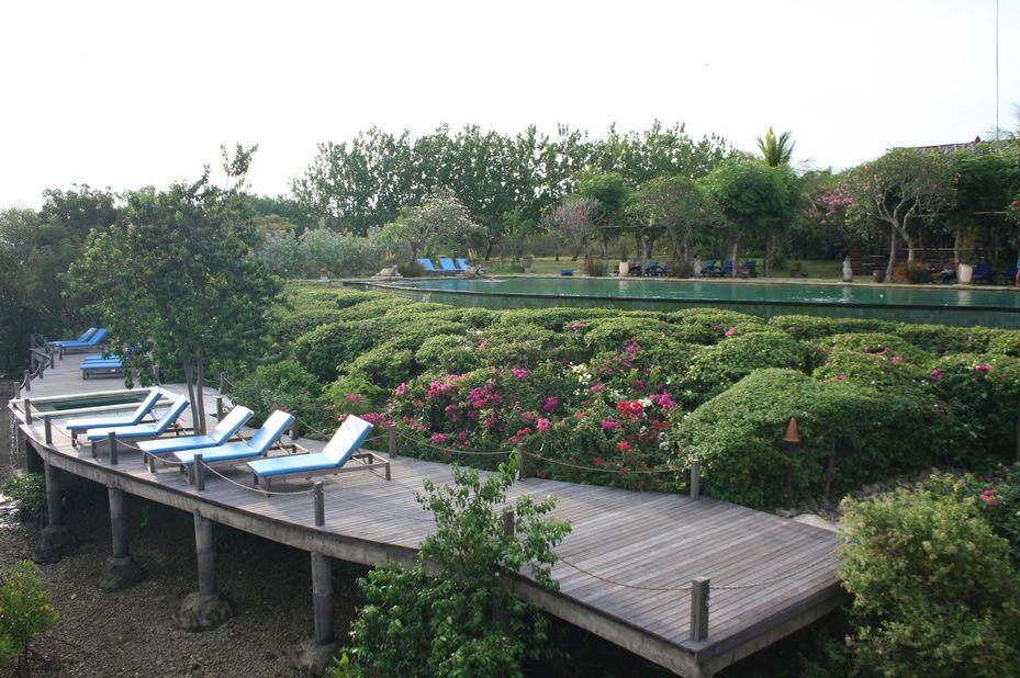 zwembad met ligbedden - Novus Gawana Resort - Menjangan Bay, Banyuwedang - Indonesië