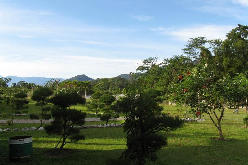 tuin - Rindu Alam - Bukit Lawang - Indonesië