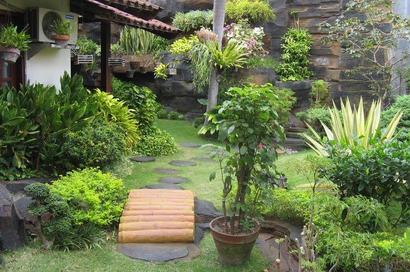 tuin - Duta Guesthouse - Yogyakarta - Indonesië