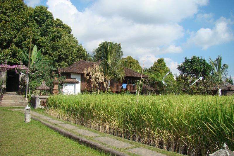 accommodatie - Puri Lumbung - Bali/Munduk - Indonesië