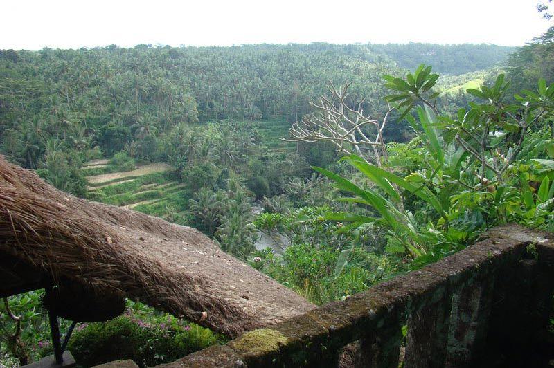 uitzicht - Taman Bebek - Bali/Ubud - Indonesië