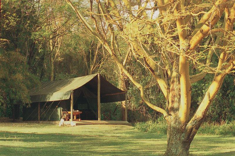tent - Siana Springs Tented Camp - Kenia