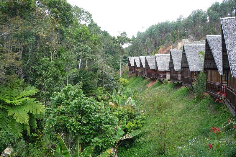 bungalows grenzend aan het park - Feon'ny Ala - Adasibe - Madagaskar