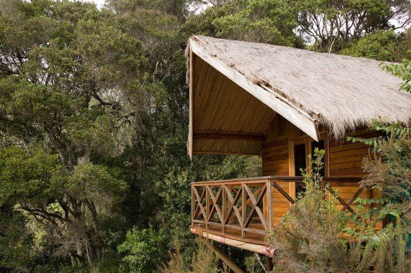 Huisje Saha Forest Camp - Saha Forest Camp - Madagaskar - foto: Saha Forest Camp