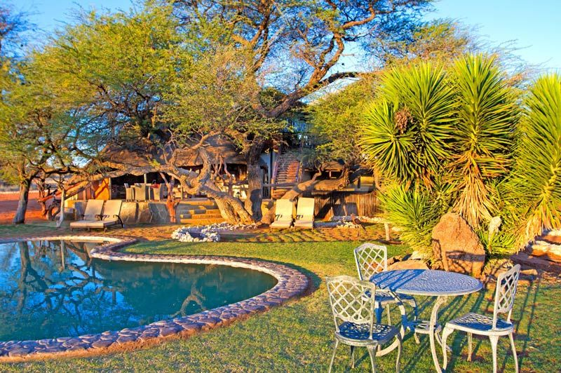 Intu Afrika Camelthorn, zwembad - Kalahari Desert - Namibië - foto: lokale agent