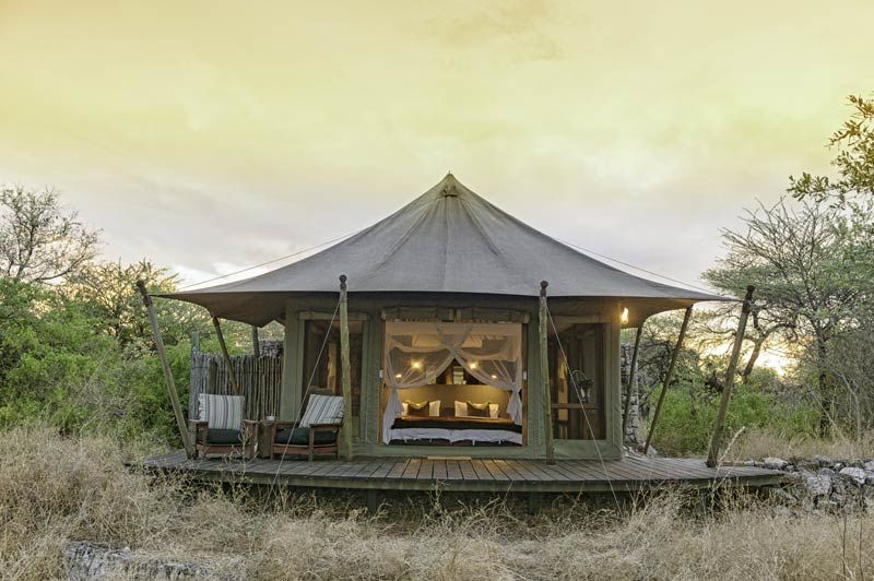 tent van Onguma Tented Camp - Onguma Tented Camp - Namibië - foto: Onguma Tented Camp