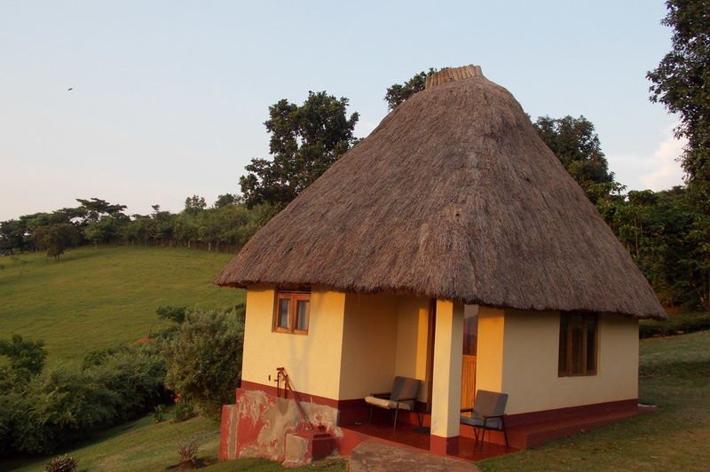 cottage - chimpanzee forest guesthouse - Oeganda