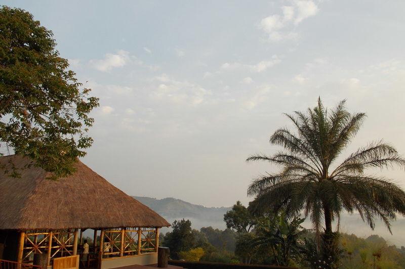 uitzicht restaurant - chimpanzee forest guesthouse - Oeganda