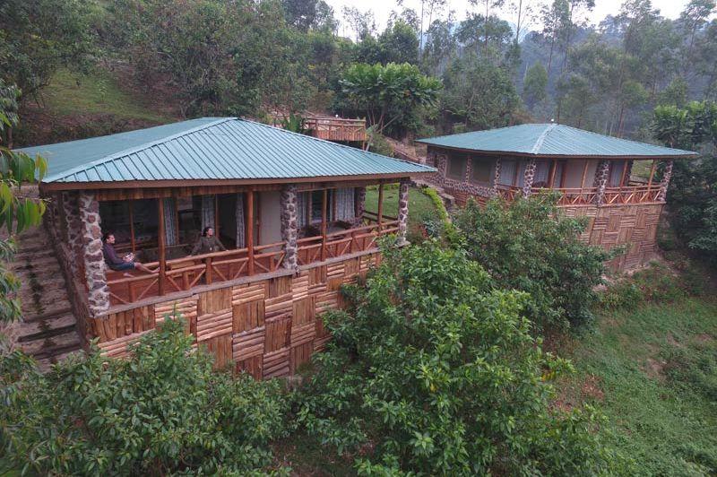 twee huisjes in groene omgeving - Rushaga Camp - Oeganda