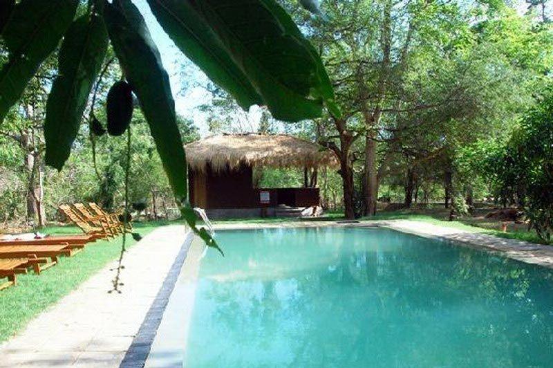 zwembad - The Other Corner - Sri Lanka