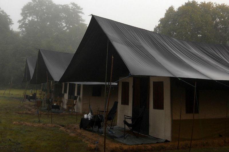 tenten in het Big Game Camp Wilpattu - Big Game Camp Wilpattu - Sri Lanka - foto: Website