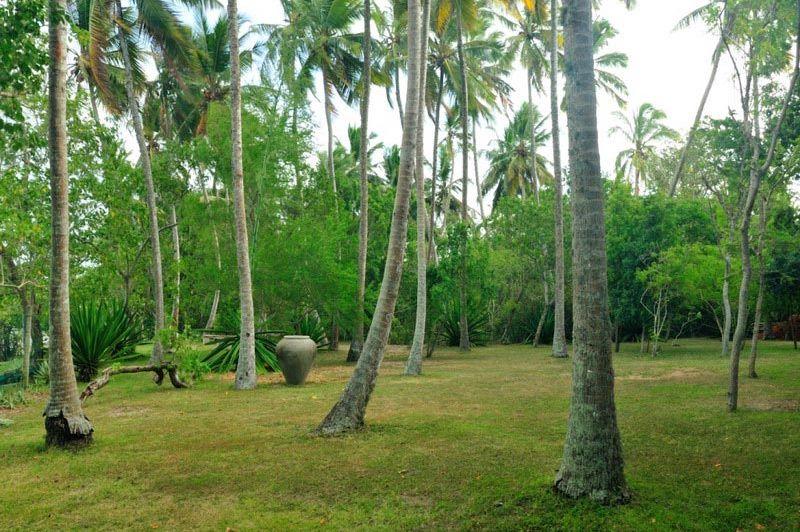 tuin van Lagoon House Rekawa - Lagoon House Rekawa - Sri Lanka - foto: Website
