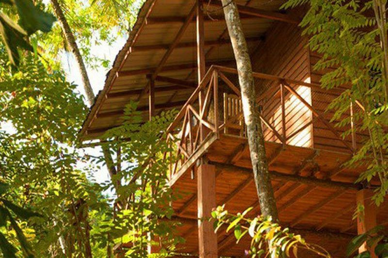 Buitenaanzicht van de Polwaththa Ecolodge - Polwaththa Ecolodge - Sri Lanka - foto: Website