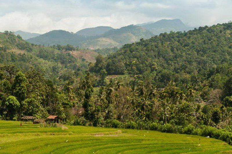 Uitzicht vanaf de Polwaththa Ecolodge - Polwaththa Ecolodge - Sri Lanka - foto: Website