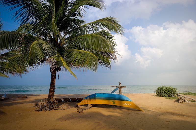Reisadvies Sri Lanka: terug naar het oude niveau!