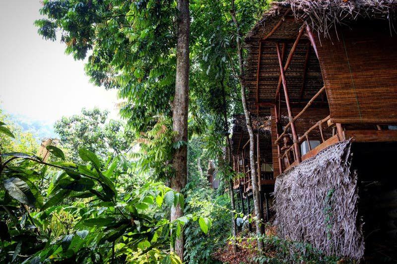 omgeving van Borderlands in Kitulgala - Borderlands - Sri Lanka - foto: Borderlands