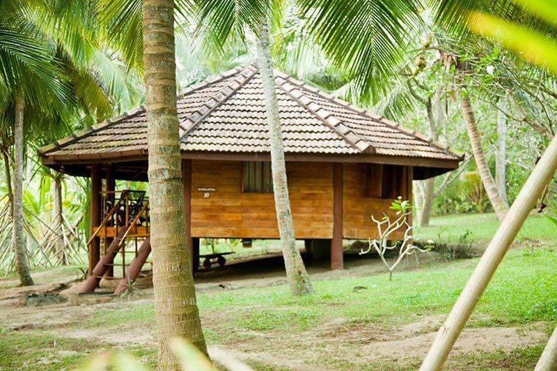 Palm Paradise Cabanas in Tangalle - Palm Paradise - Sri Lanka - foto: Palm Paradise