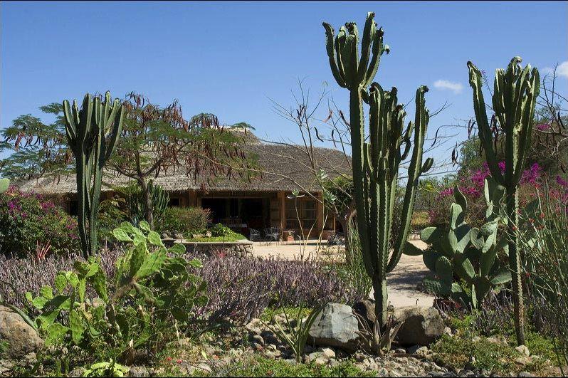 exterior - kia lodge - Tanzania
