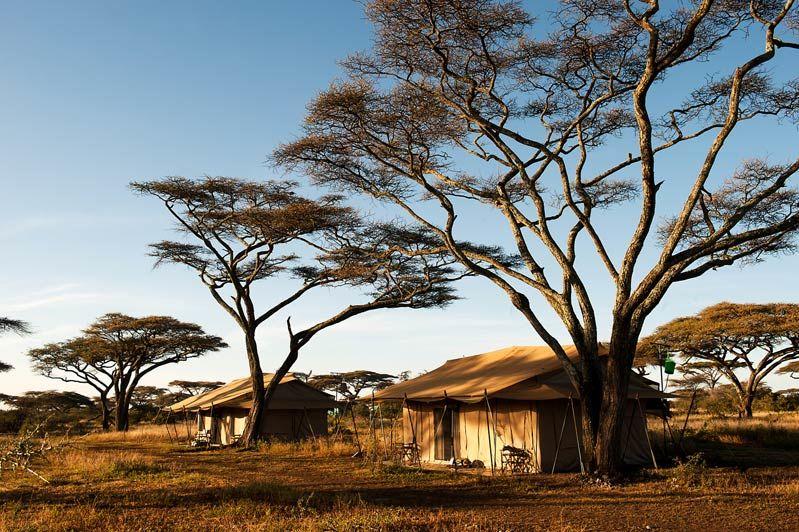 tenten van Mara under Canvas - Mara under Canvas - Tanzania - foto: Mara under Canvas
