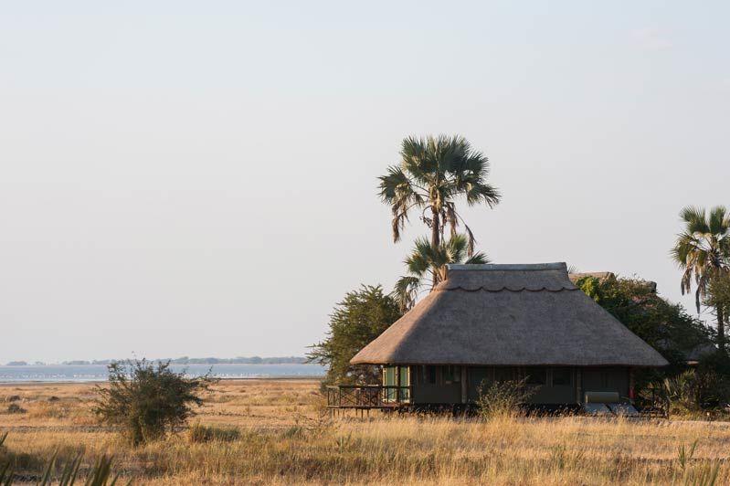 bungalow van Maramboi Tented Camp (2) - Maramboi Tented Camp - Tanzania - foto: Maramboi Tented Camp