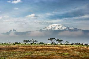 Amboseli National Park - Kilimanjaro berg - Kenia - foto: unsplash