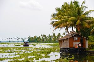 Backwaters - Cochin - Kerala - India - foto: pixabay