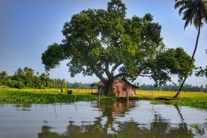 Backwaters - Houten Huisje - Kerala - India - foto: Canva