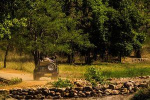 Bandhavgarh National Park - Jeep - India - foto: flickr