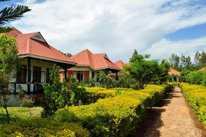 Bougainvillea Safari Lodge - chalet - Ngorongoro Highlands - Tanzania