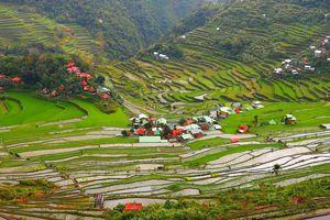 Cordillera - huisjes tussen de rijstterrassen - Filipijnen - Intas - CTTO
