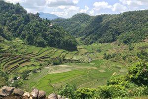 Cordillera - rijstterrassen - Filipijnen - Intas - CTTO