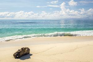 Denis Private Island Resort - beach - Seychellen - foto: Denis Private Island Resort