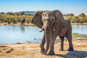 Ghoha Hills Savuti - Chobe National Park - Botswana - foto: Ghoha Hills