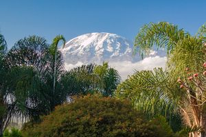 Kilimanjaro - berg - natuur - Tanzania - foto: pixabay